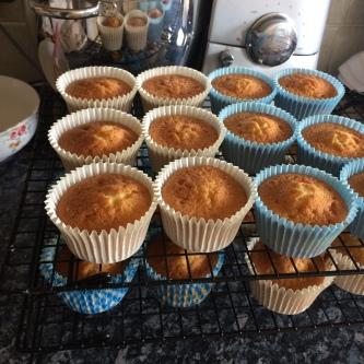 vanilla_cupcakes.JPG